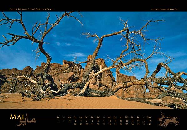 taderass_kalender2010_5