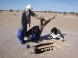 Alhassane_Ekoudou_II_alt DSC03330_15cm